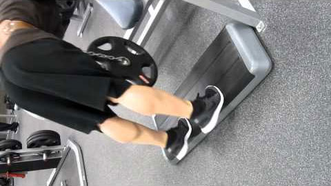 Donkey Calf Raises