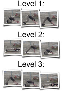 Tacfit Levels Progression